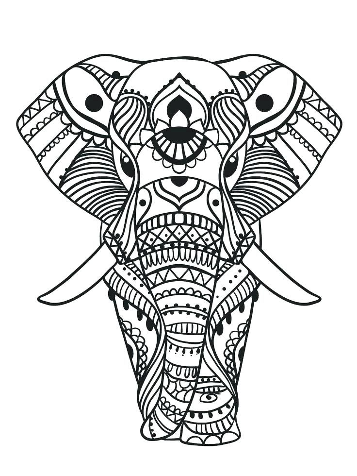 736x980 Elephant Color Page Pattern Elephant Coloring Pages Enjoy Coloring