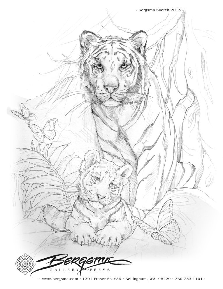 765x990 Tigers Art . Drawing Tigers, Adult Coloring