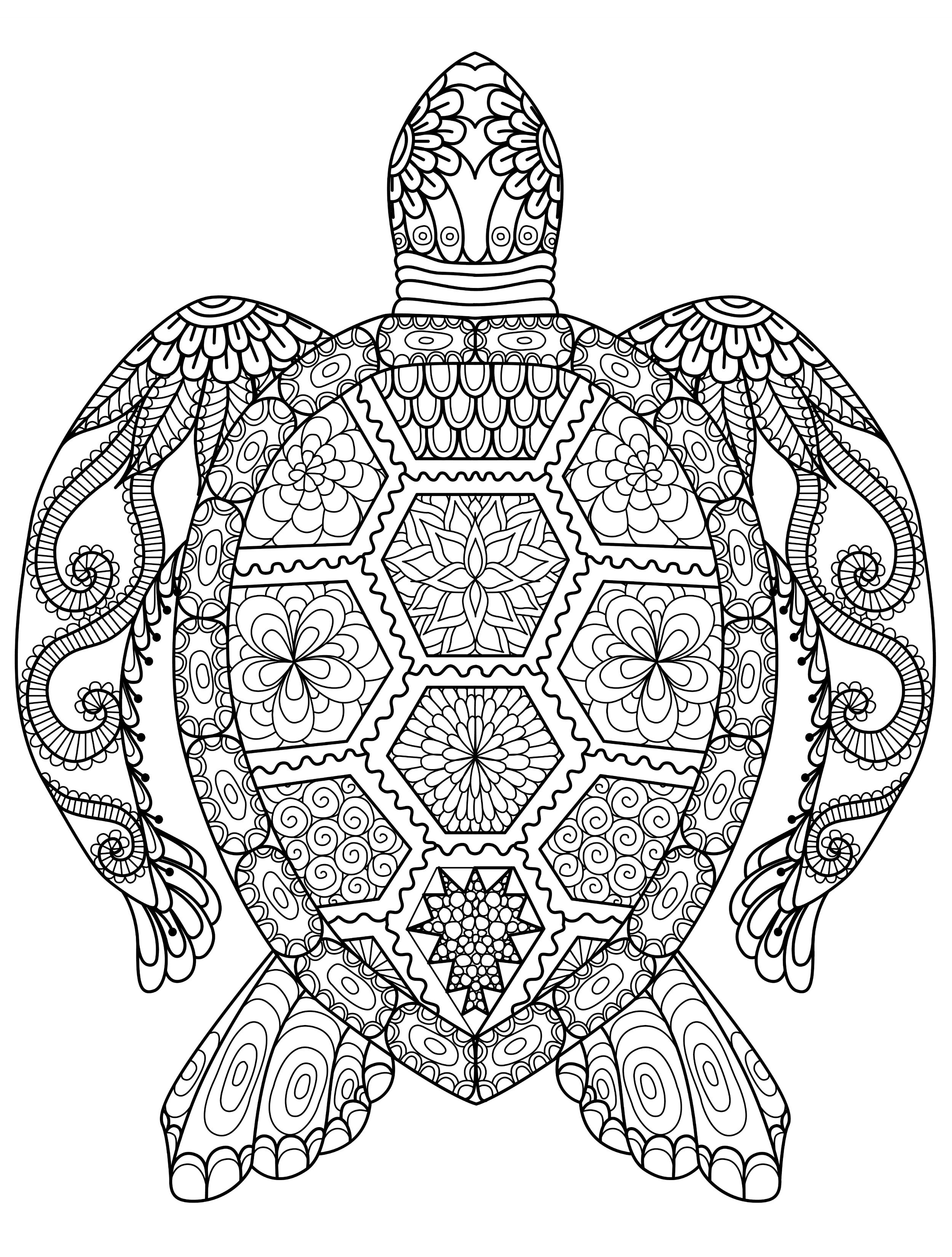 2500x3300 Adult Coloring Pages Animal Patterns Download