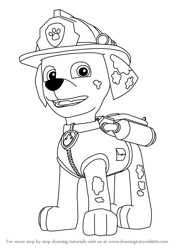 598x844 Learn How To Draw Marshall From Paw Patrol (Paw Patrol) Step By