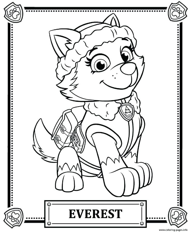 736x896 First Paw Patrol Coloring Games Halloween Costumes