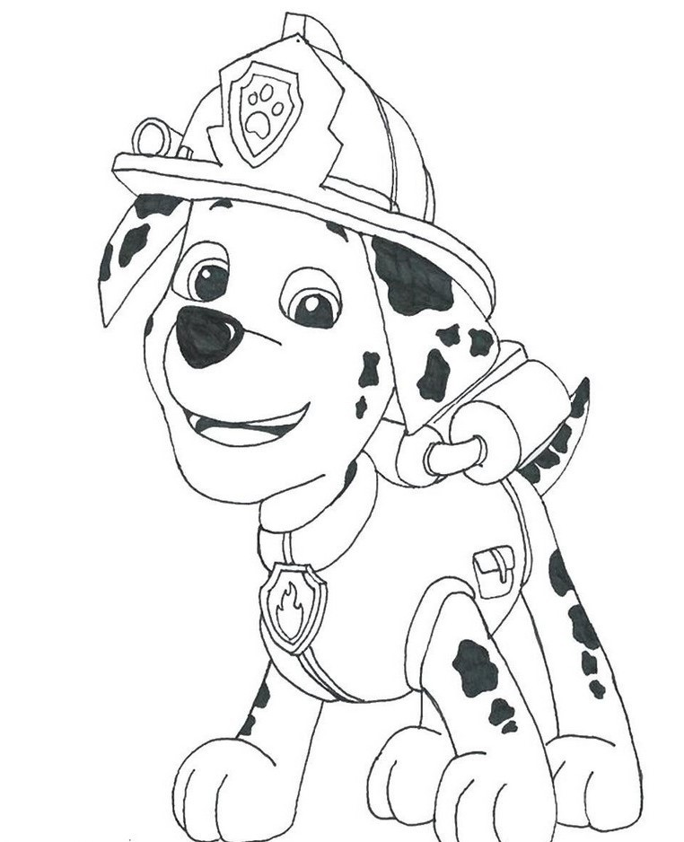 Paw Patrol Marshall Drawing at GetDrawings | Free download