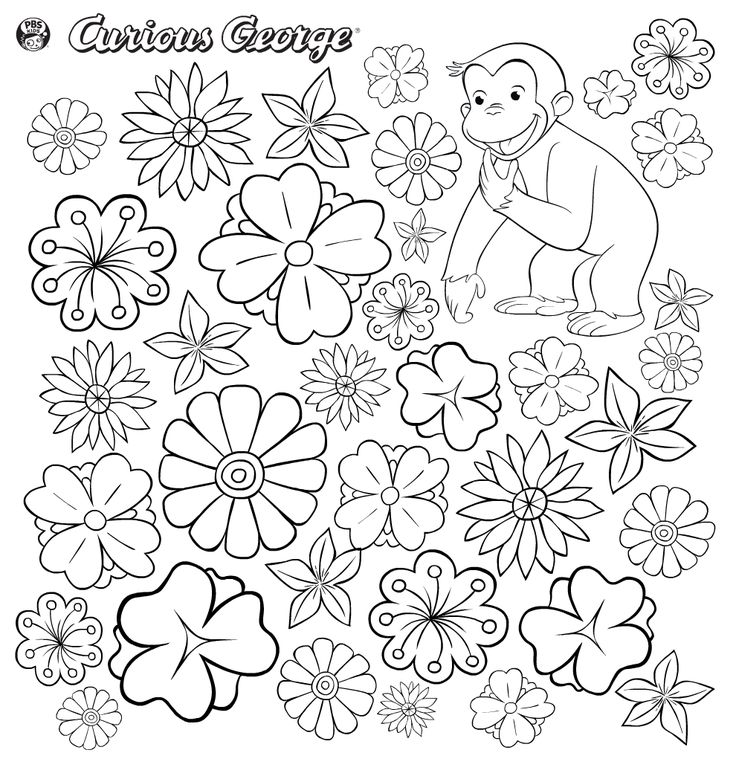 736x776 74 Best Curious George Images On Curious George