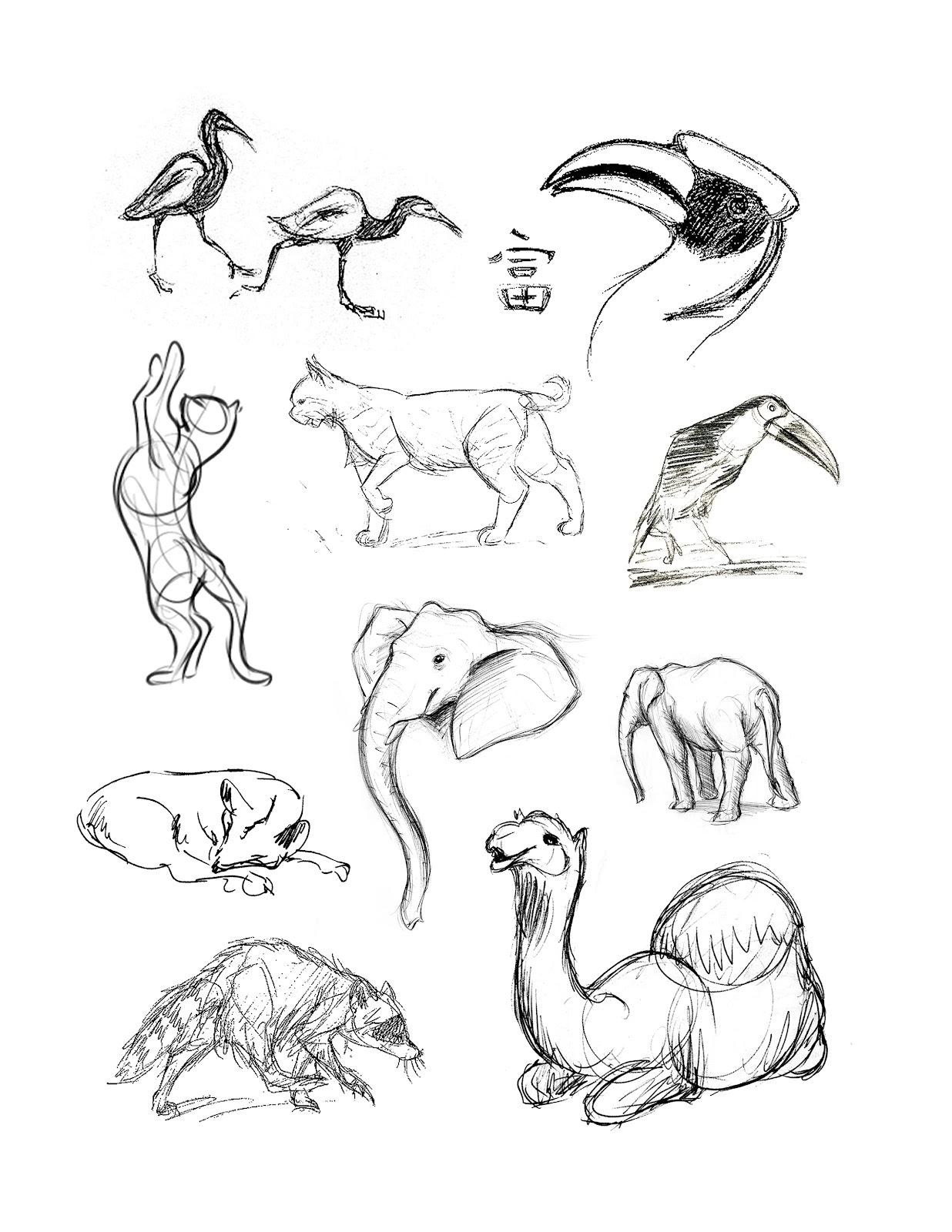 1236x1600 Drawing Animals