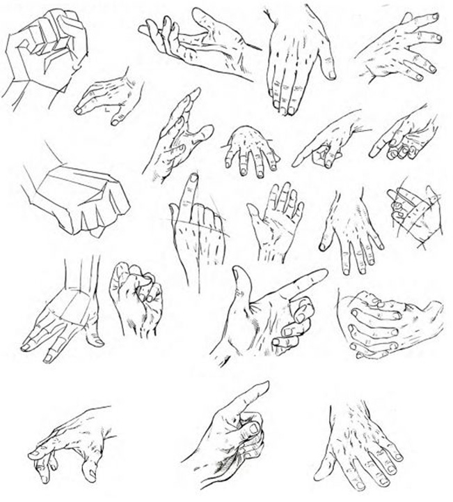 651x720 To Draw Hands Artist By