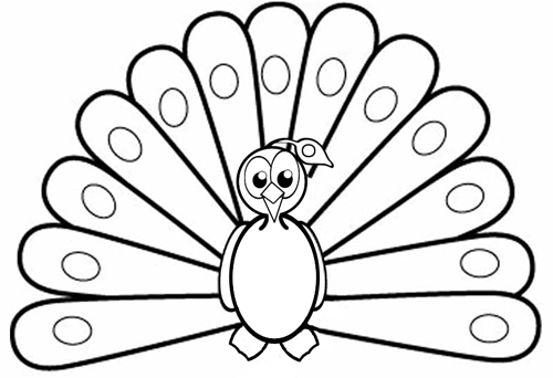 500x342 How To Draw Cartoon Peacocks Step By Step Drawing Tutorial