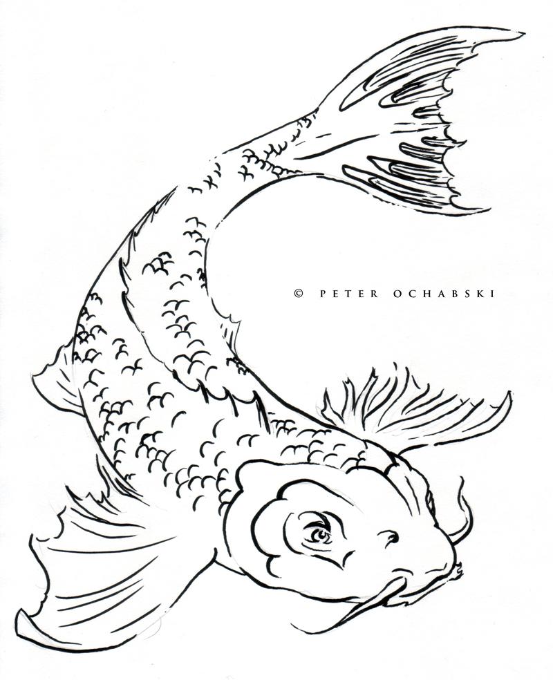 800x984 Catfish Drawing Group