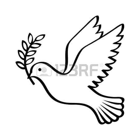 Peace Dove Drawing