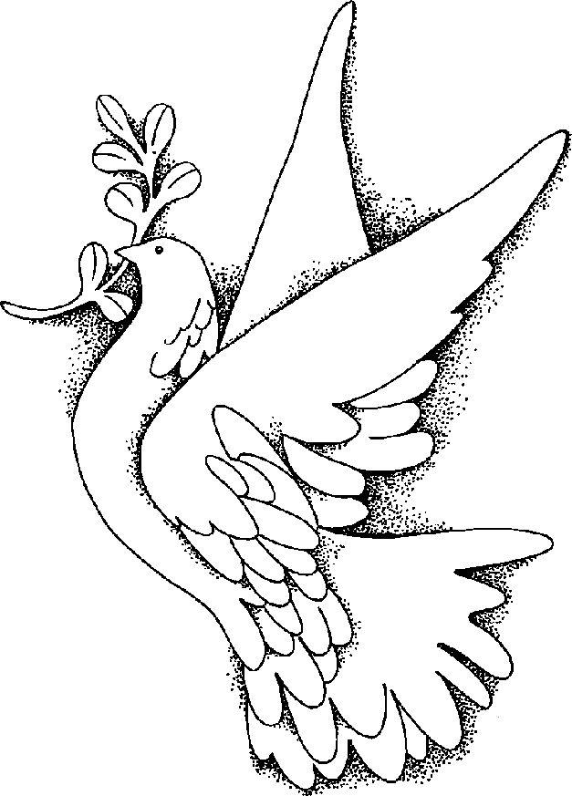 627x873 Peace Dove Clipart Drawn