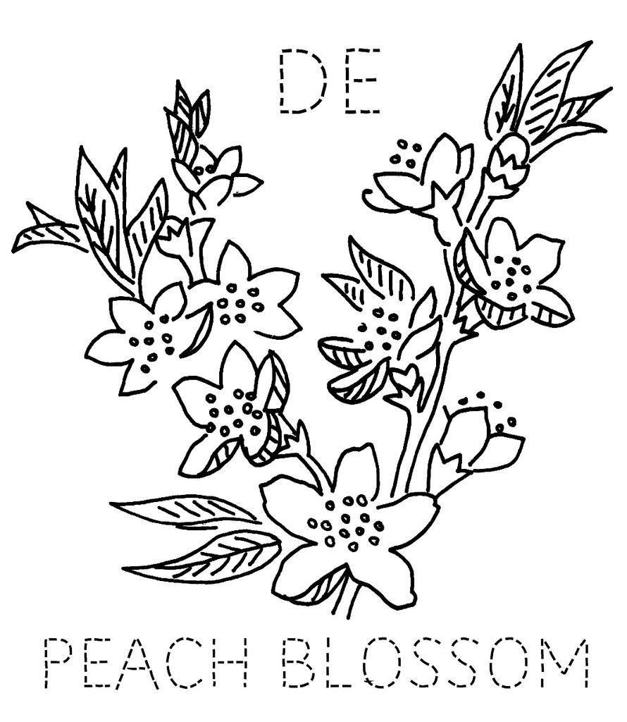 890x1024 Delaware Peach Blossom Peach Blossoms, Embroidery And Stitch