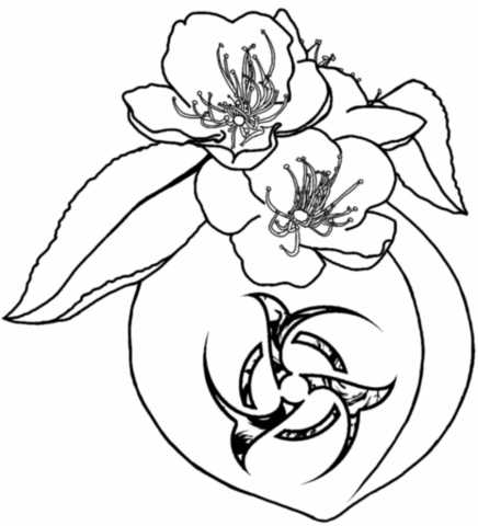 436x480 Finger Peach Blossoms Prunus Persica Tattooadrick Rusiecki