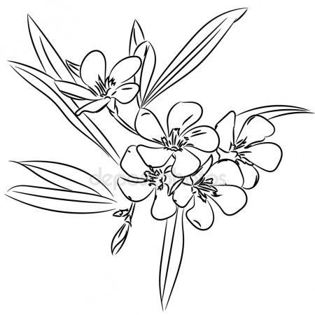450x450 Flower