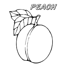 230x230 Image Result For Peach Line Drawing Tats Tatting