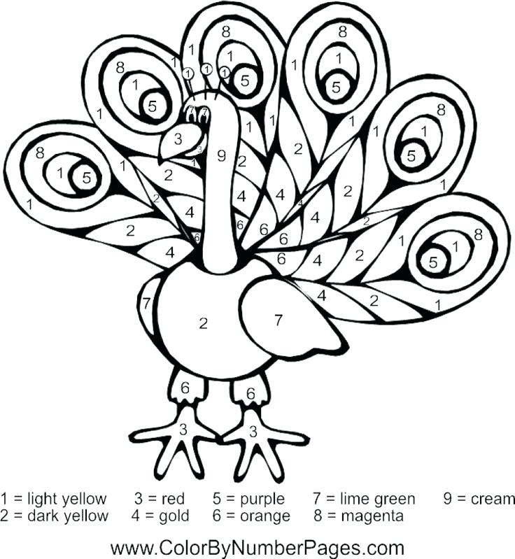 736x799 Peacock Feather Coloring Page Feather Coloring Page Peacock