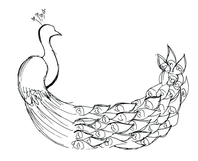 640x521 Cartoon Peacock Coloring Pages Printable For Kids Feather Page