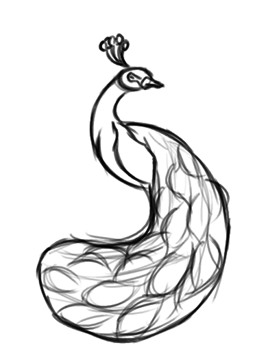 372x508 Peacock Clipart Sketch
