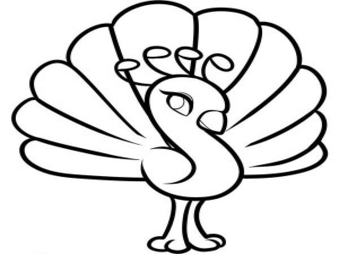 1152x864 Adorable Baby Cow Coloring Pages Peacock Cute Little In Cartoon