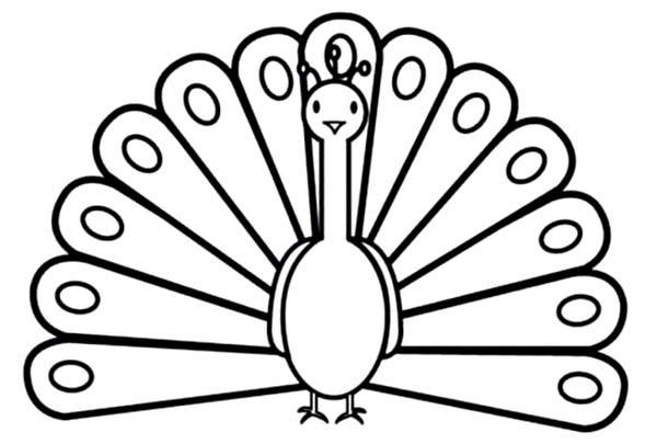 600x405 Clipart Peacock Black And White Collection