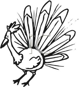 273x300 Peacock Clipart Black And White Clipart Panda