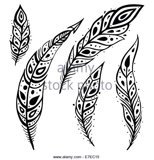 520x540 Peacock Feather Black And White Stock Photos Amp Images