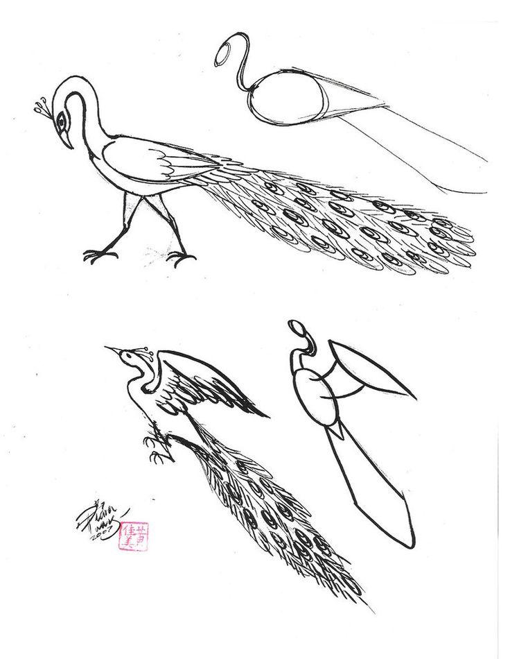 736x950 267 Best Craft Outline Birds Images On Animal