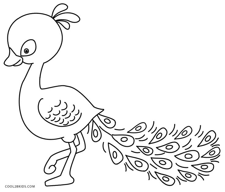 736x628 Printable Peacock Coloring Pages For Kids Cool2bkids