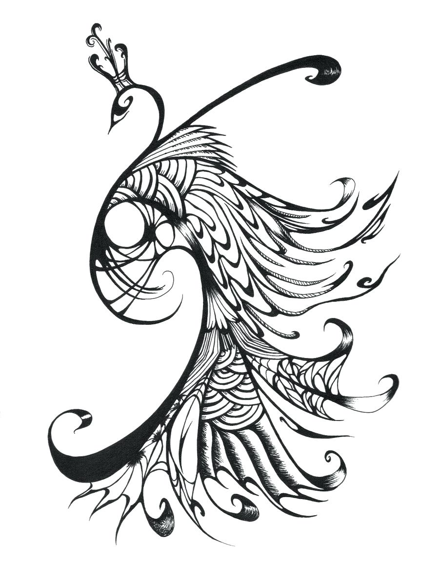 900x1165 Coloring Peacock Feather Coloring Page