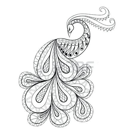 450x450 Peacock Feather Coloring Page Peacock Feather Coloring Page Medium