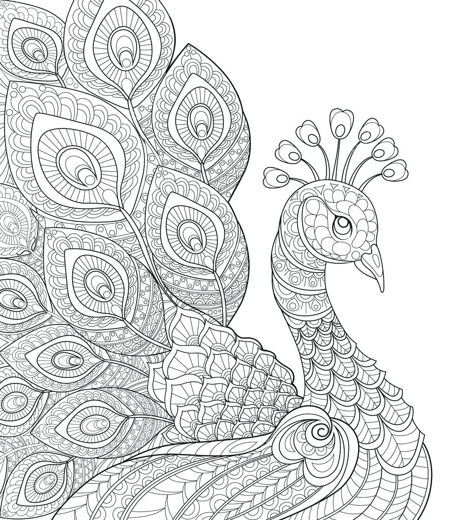 896x1024 Wonderful Coloring Pages Of Peacocks 32