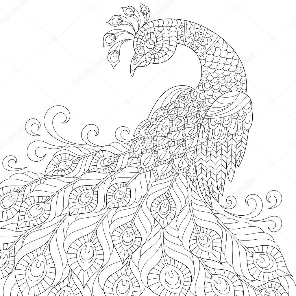 1024x1024 Decorative Peacock. Adult Antistress Coloring Page Stock Vector