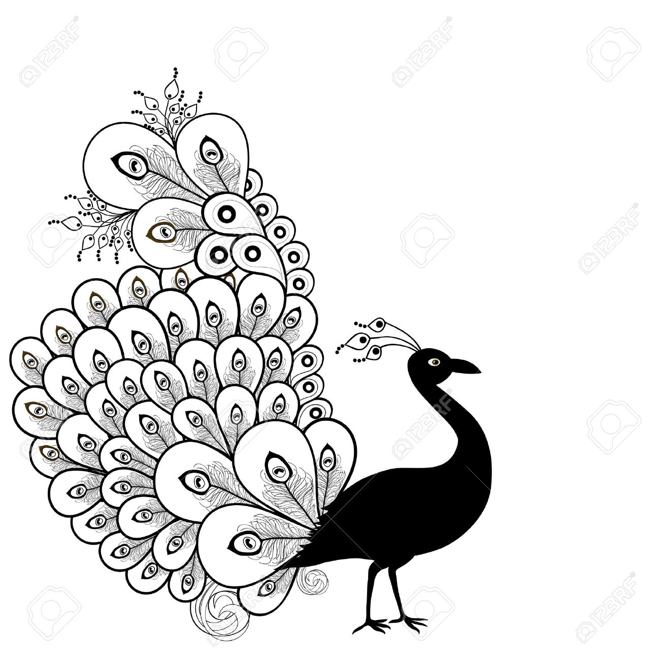 1300x1300 Drawing Of Peacock In Black And White Peacocks Coloring Pages