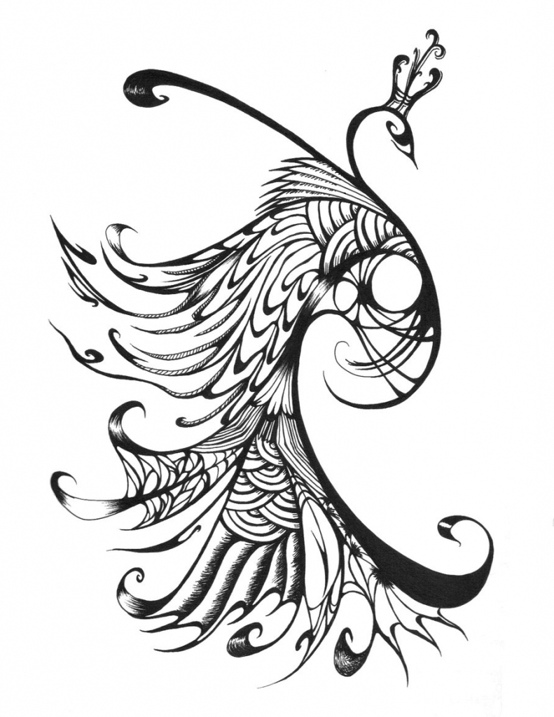 Aninimal Book: Peacock Drawing In Pencil at GetDrawings.com   Free for ...