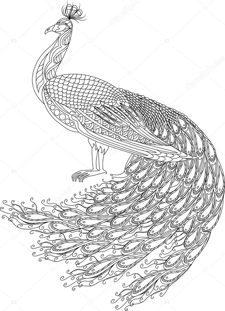 741x1023 Hand Drawn Peacock For Anti Stress Coloring Page With High Details