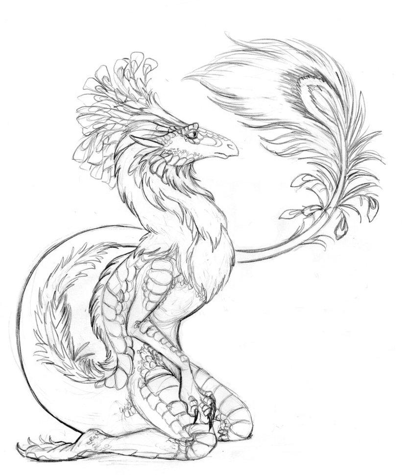 825x969 Peacock Dragon By Lunatteo