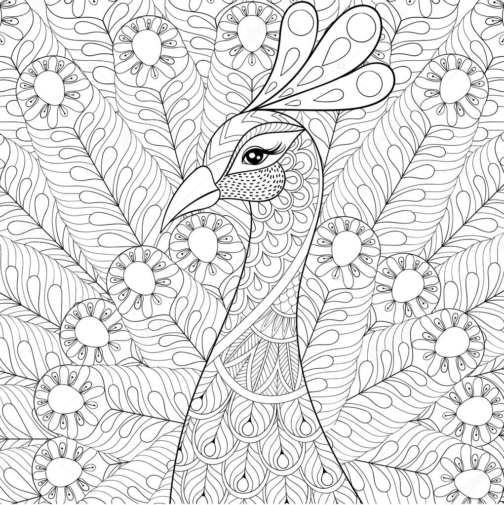 1021x1023 Peacock With Feathers In Zentangle Style. Freehand Sketch For Ad