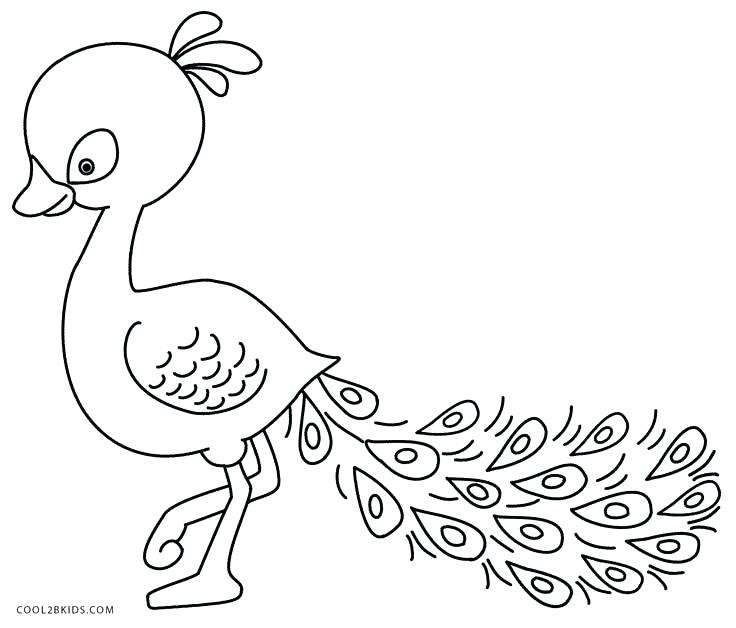 736x628 Peacock Feather Coloring Page Feather Coloring Page Peacock