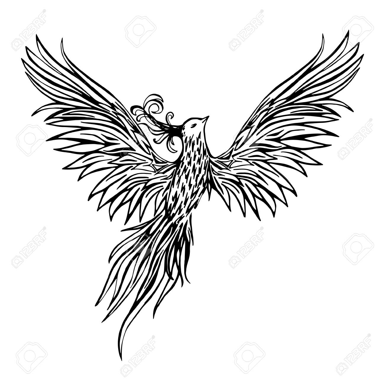 1300x1300 Hand Drawn Chinese Peacock Tattoo.asian Phoenix Fire Bird Tattoo