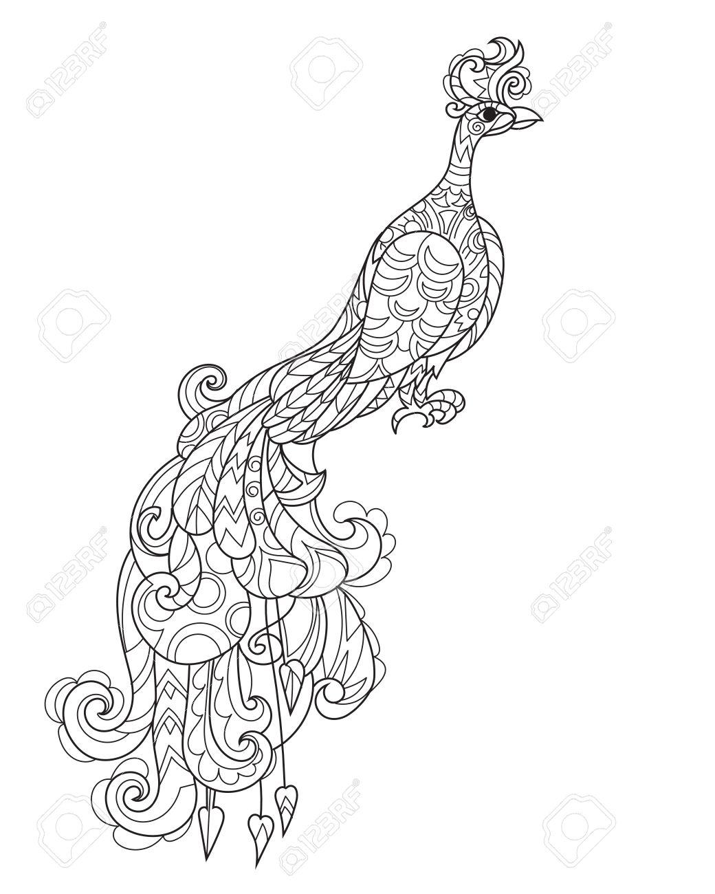 1040x1300 Zen Art Stylized Peacock In Flowers. Hand Drawn Doodle Boho Vector