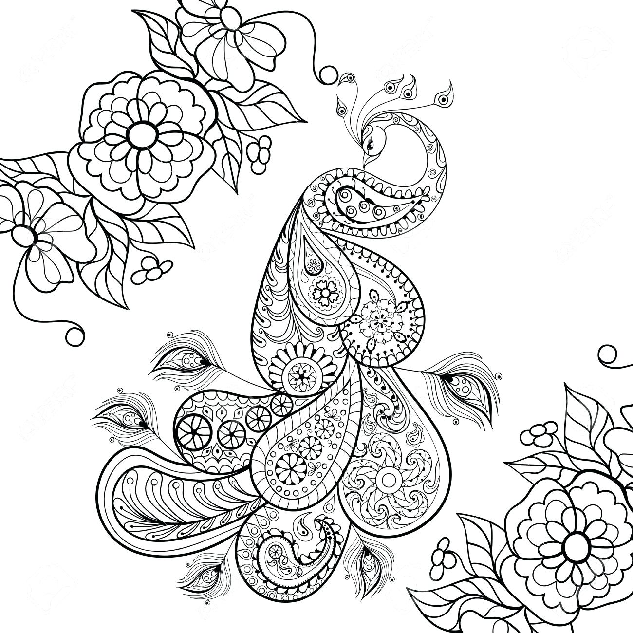 1300x1300 Printable Zentangle Peacock Coloring Pages Printable Page