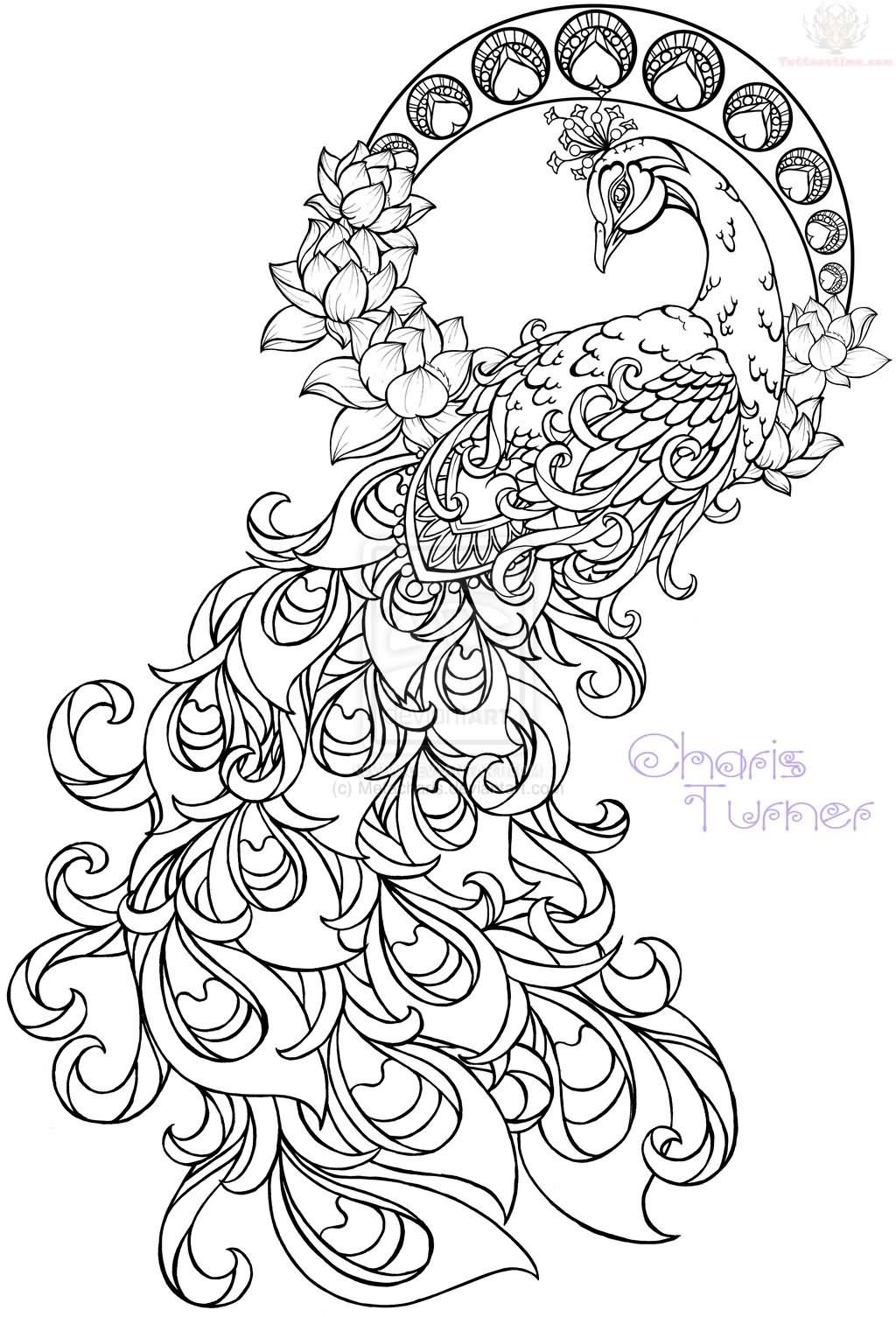 1024x1505 Beautiful Large Peacock Paisley Pattern Tattoo Design Chainimage
