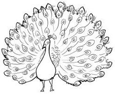 236x193 How To Draw A Peacock (I Would Probably Make Several Changes, But