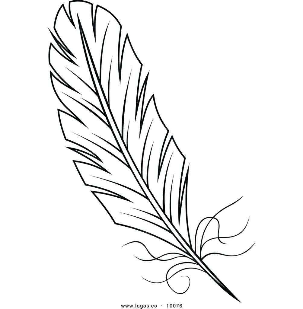 1004x1024 Coloring Feather Coloring Page Turkey Peacock. Feather Coloring Page