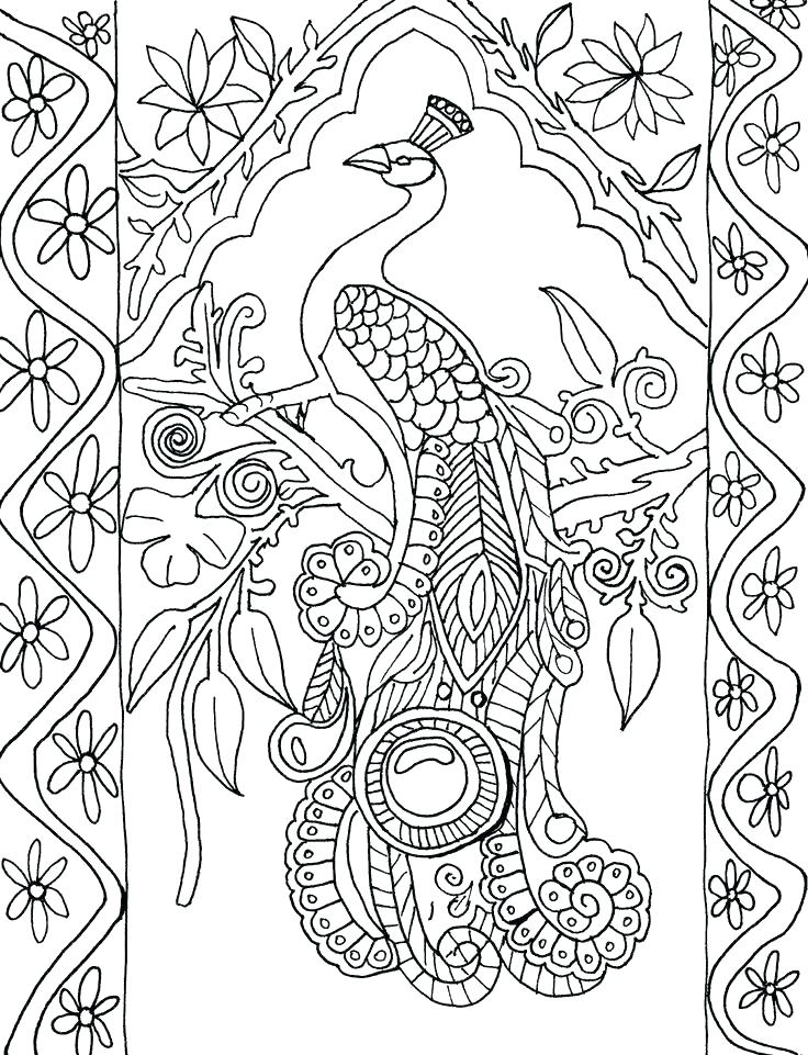 736x961 Coloring Pages Peacock Peacock Feather Coloring Page Peacock