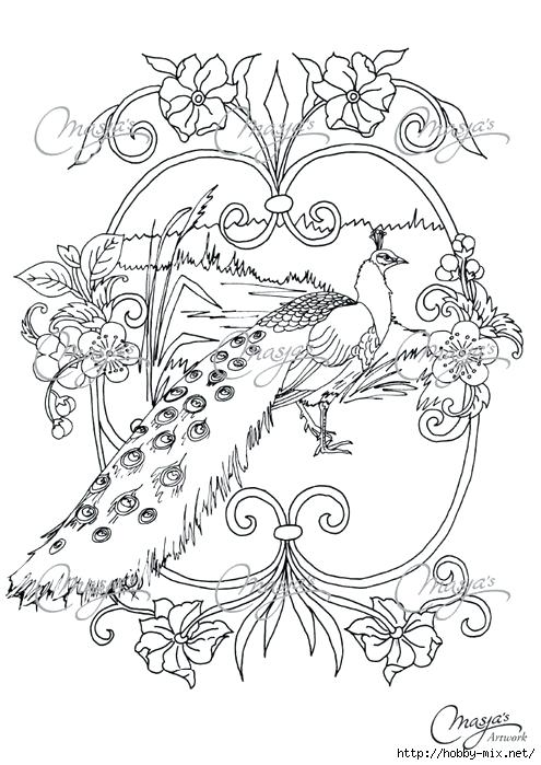 495x699 Peacock Feather Coloring Page Feather Coloring Page Peacock