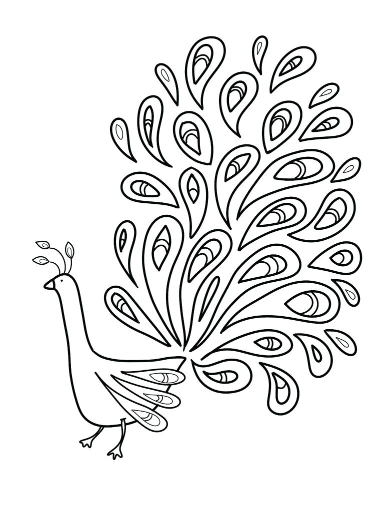 736x1041 Peacock Feather Coloring Page Pin Drawn Feather Peacock Feather 6