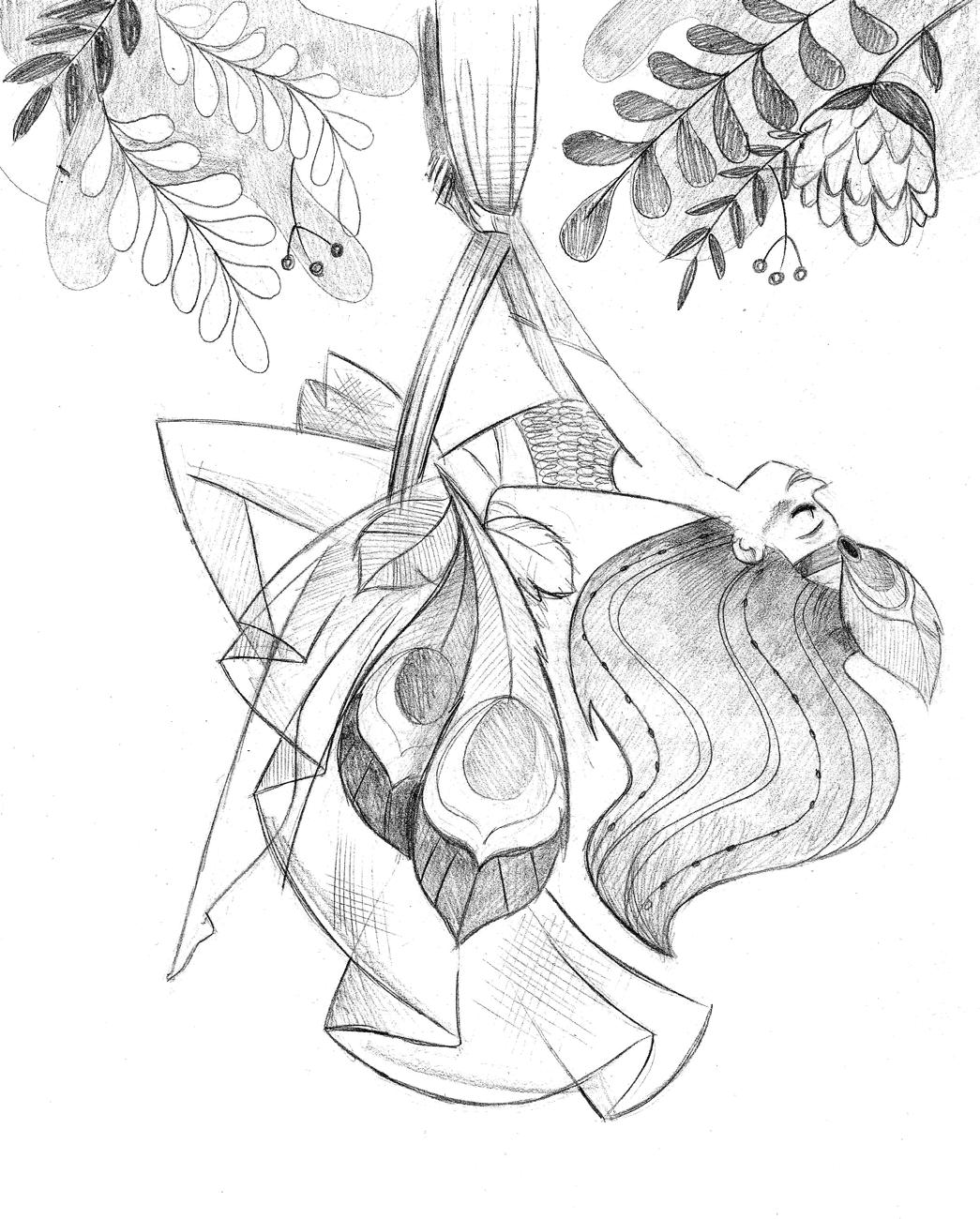 Peacock Sketch Drawing