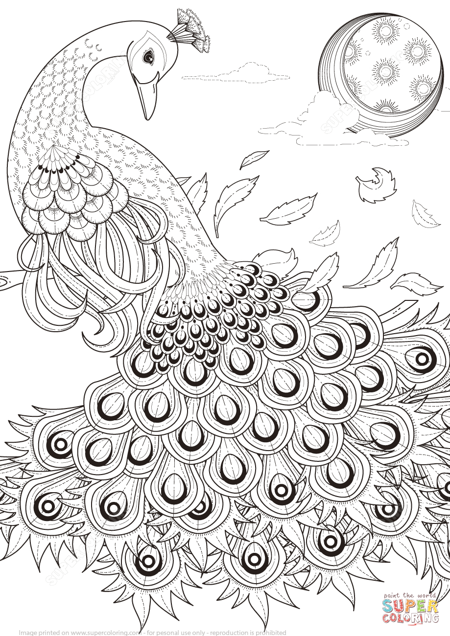 919x1300 Graceful Peacock Coloring Page Free Printable Pages