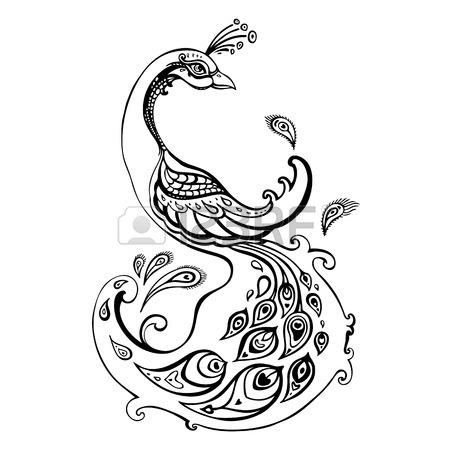 Peafowl Drawing