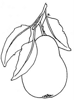 238x320 Pear Line Sketch Art Drawings Pear, Embroidery