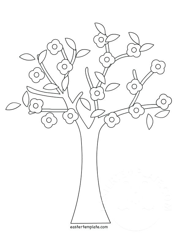 581x803 Coloring Trees Pear Tree Coloring Page Pine Tree Coloring Pages